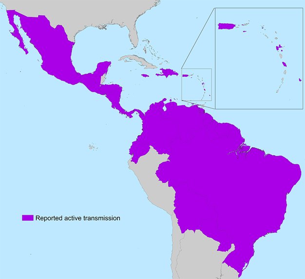 Zika in Americas June 2016